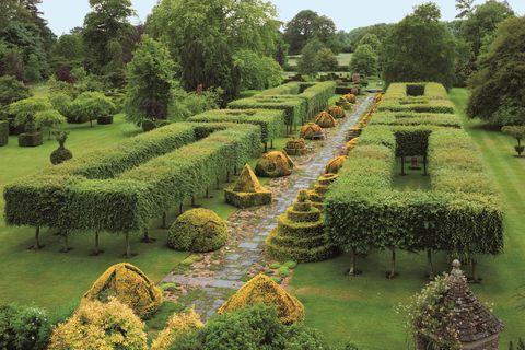 この土地と建物は友人から1980年に購入したもの。18世紀末に建てられた「地方の邸宅(マナーハウス)」に改築を重ねて「夢の庭園」にしたチャールズ皇太子。14年の歳月をかけて一般に公開できる庭にしました。この「タイム(シソ科のハーブ)の小道」も、皇太子自身が砂利を敷き、タイムをひとつひとつ丁寧に植えて完成したものなのだとか。