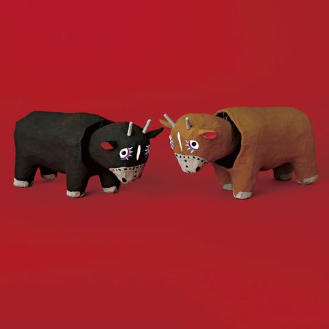 琉球張子の闘牛