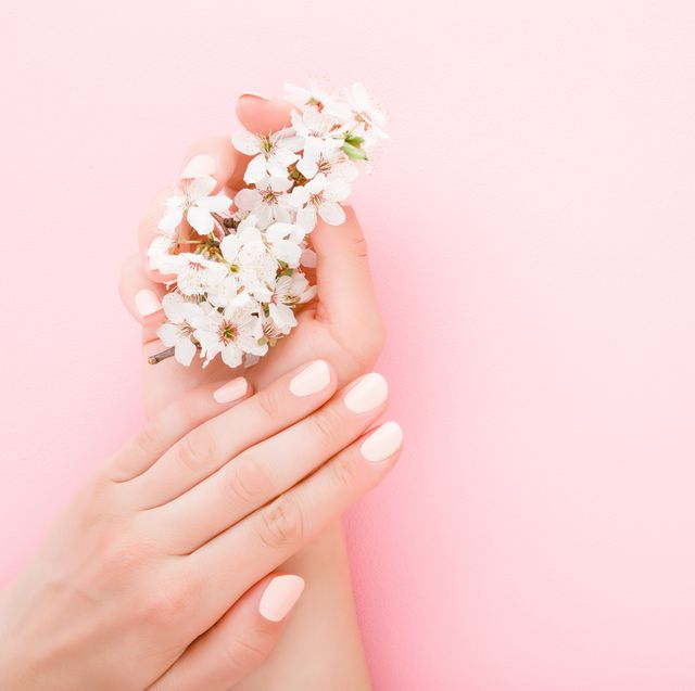beautiful groomed woman hands with white branch of cherry blossoms on light pink table background pastel color closeup manicure beauty salon concept empty place for text or logo top down view