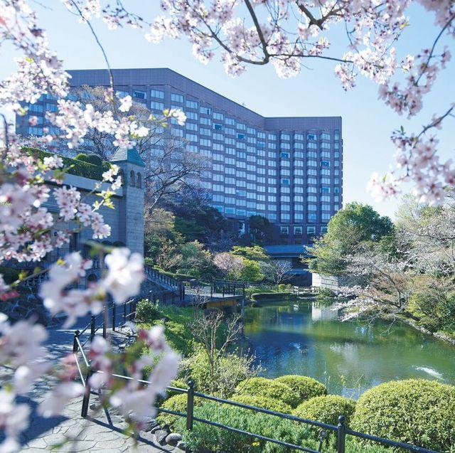花見ステイ「ホテル椿山荘東京」