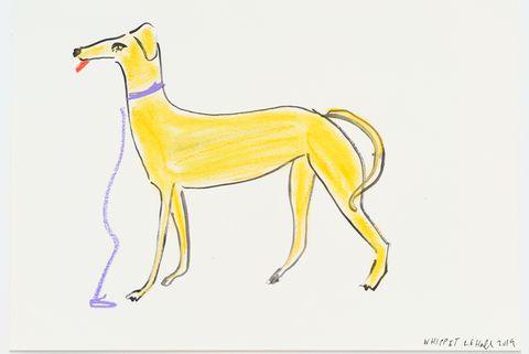 Vertebrate, Mammal, Yellow, Drawing, Canidae, Line art, Wildlife, Sketch, Fawn, Tail,