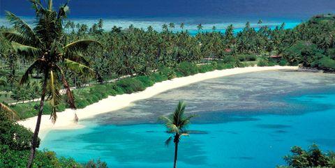 Body of water, Coastal and oceanic landforms, Shore, Coast, Water, Tree, Ocean, Beach, Caribbean, Tropics,