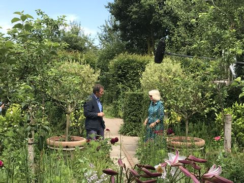 camilla, duchess of cornwall being interviewed about her garden during an appearance on bbc program gardeners' world
