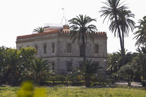 Tree, Palm tree, Building, Arecales, Architecture, Estate, Woody plant, Mansion, Palace, Plant,