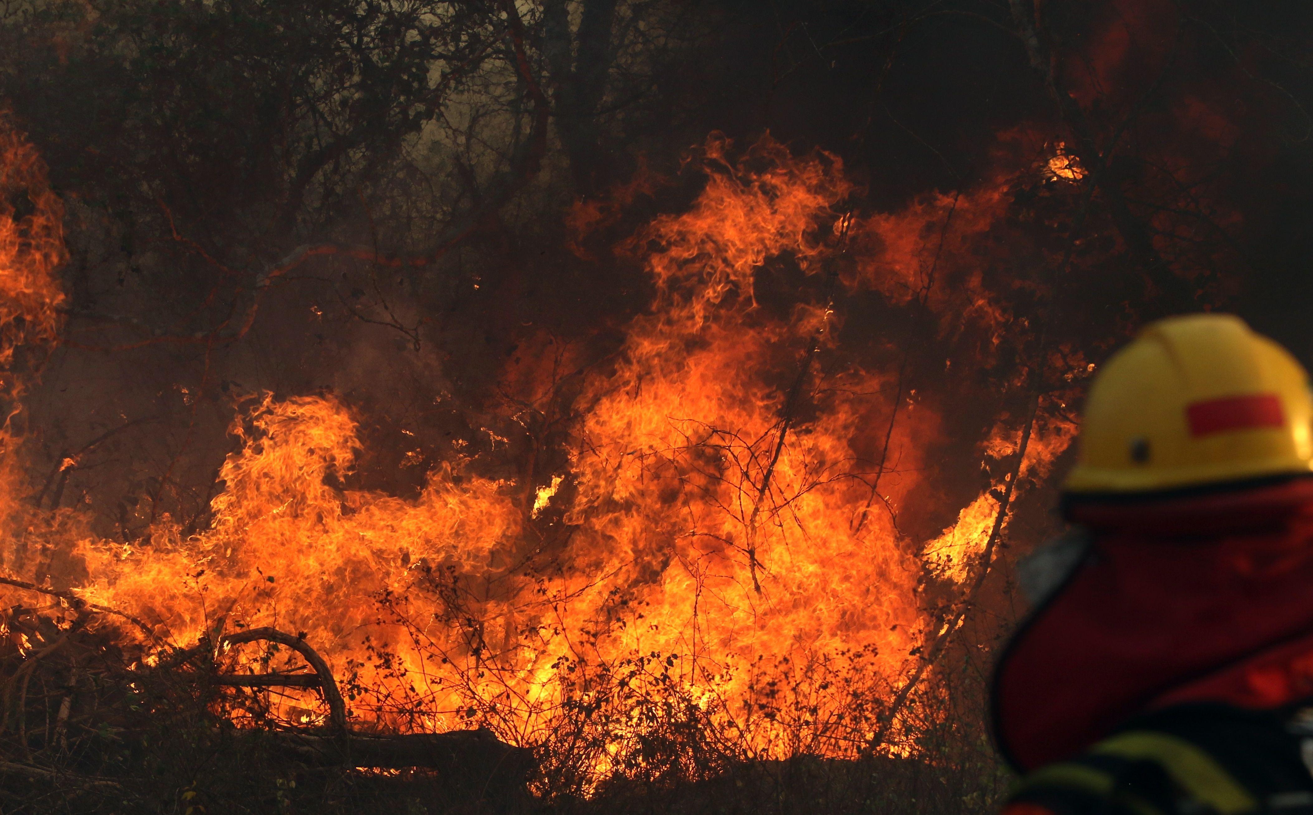 In Brasile stanno bruciando i polmoni del mondo, e le conseguenze saranno di tutti