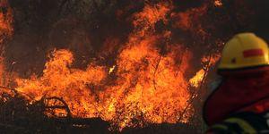 BOLIVIA-FIRE-PANTANAL-FOREST