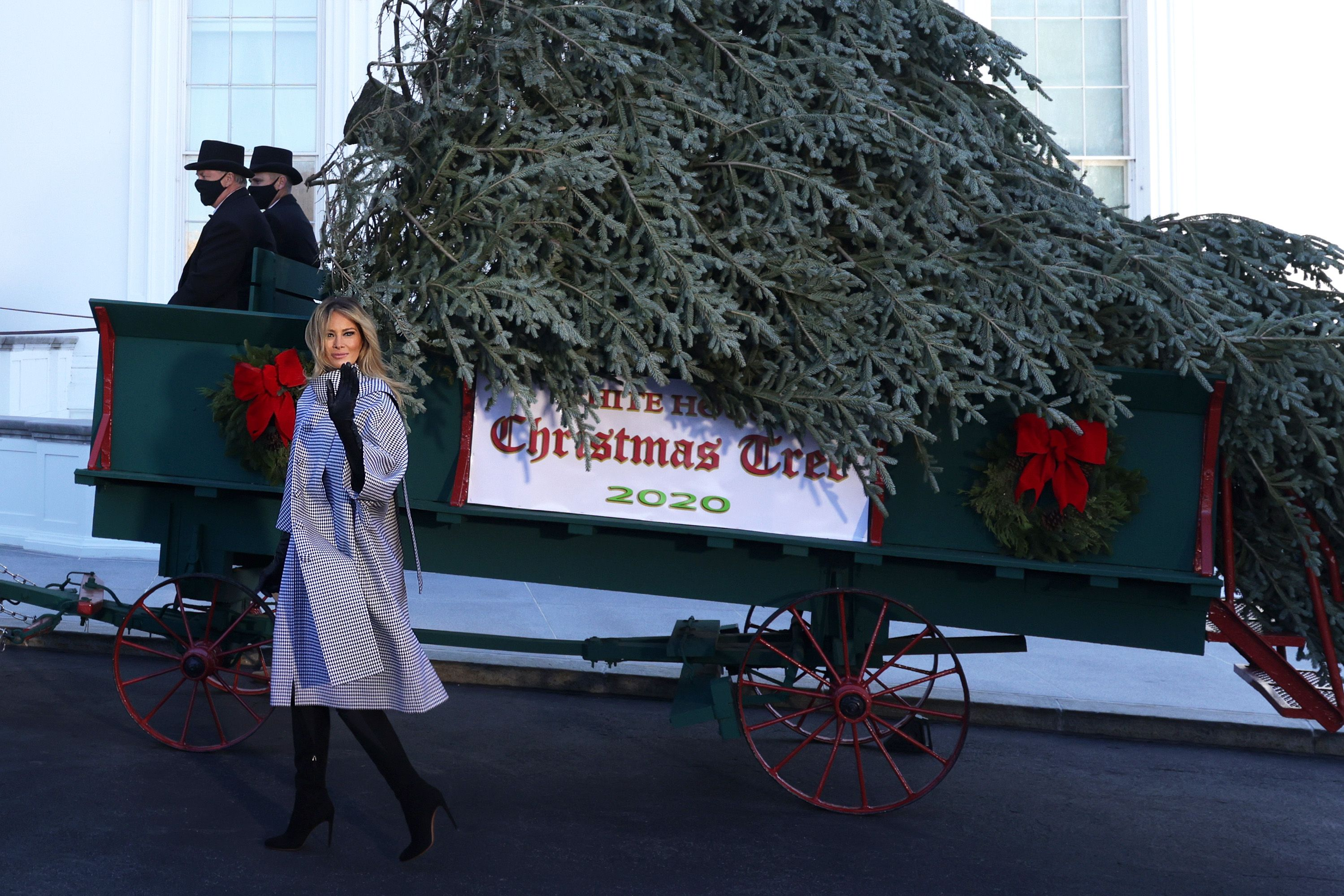 First Lady Melania Trump Welcomes White House Christmas Tree