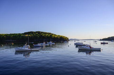 fishing boats in bar harbor, mount desert island, usa