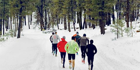 Flagstaff Runners in Snow