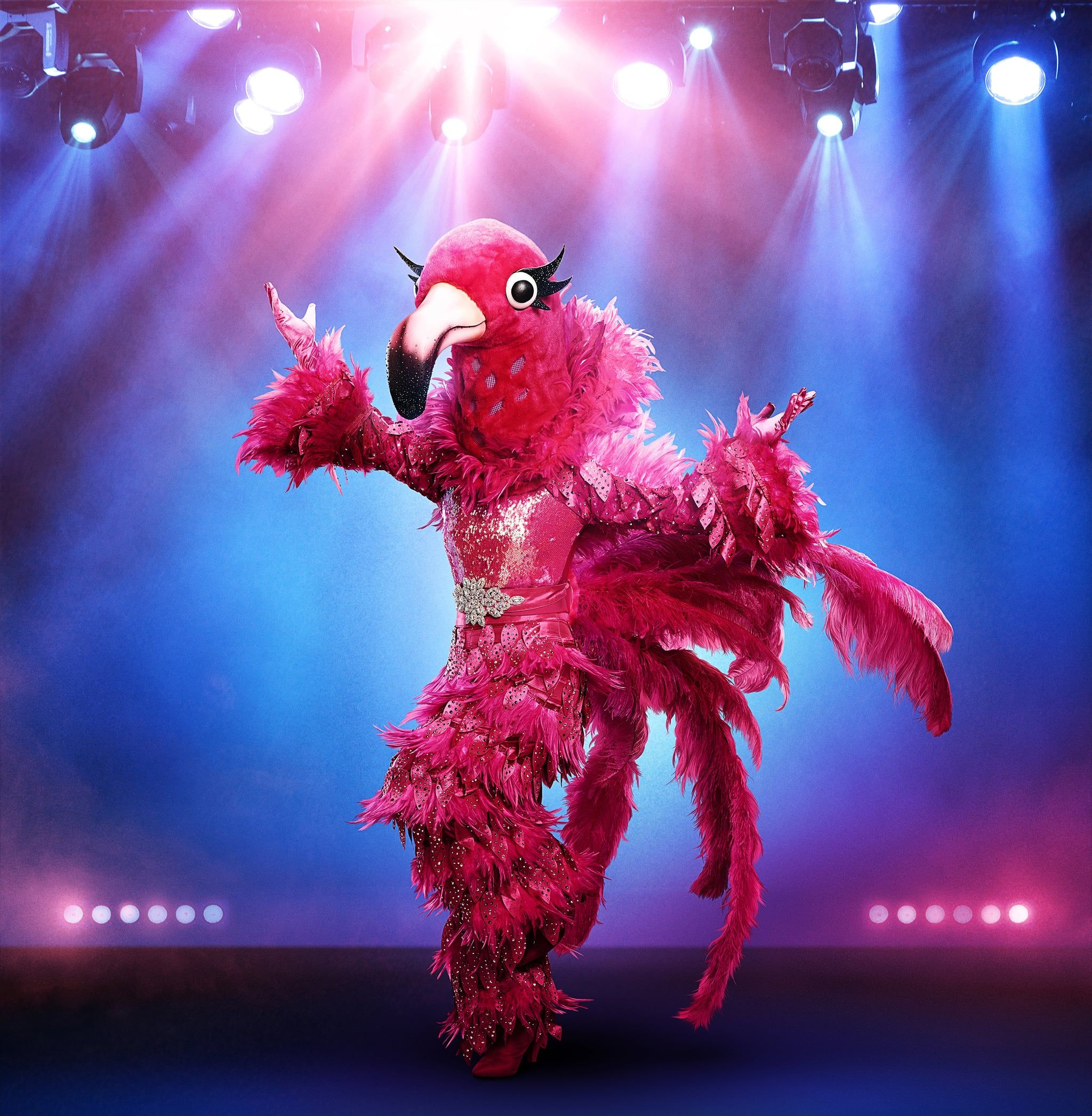 Who Is the Flamingo on 'The Masked Singer' Season 2?