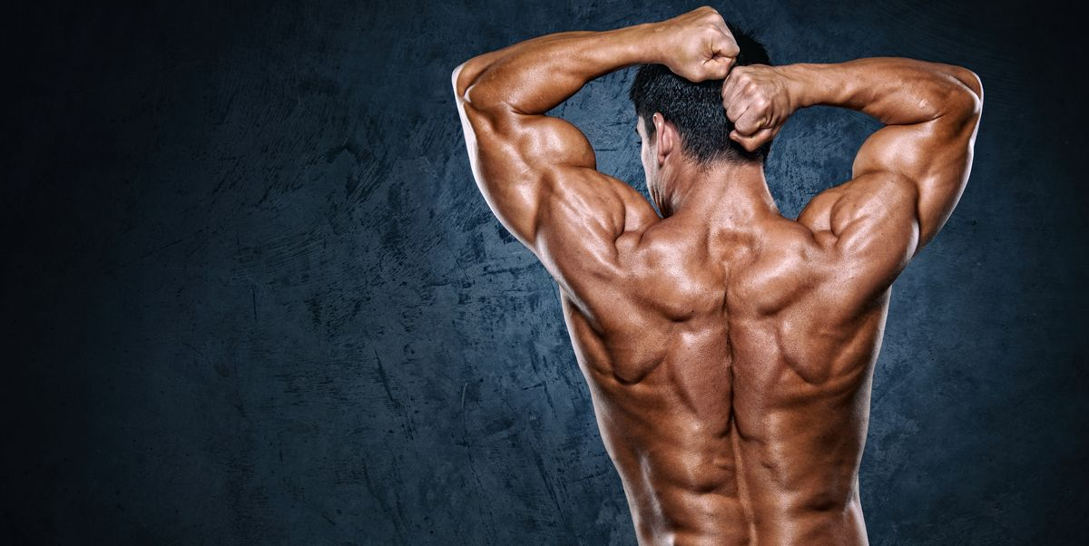 16 Best Trapezius Workouts Exercises For Traps Back Muscles