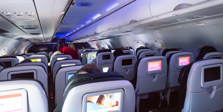 flight attendant summer