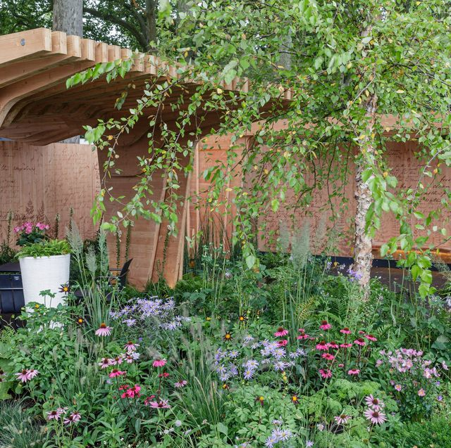 the florence nightingale garden a celebration of modern day nursing designed by robert myers sponsored by the burdett trust for nursing show garden rhs chelsea flower show 2021 stand no 322