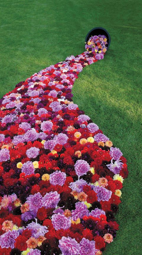 flower decoration ideas rafanelli dahlia lawn veranda
