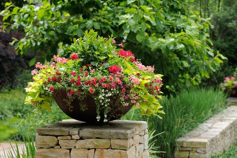 Container Gardening, How To Prepare Outdoor Planters