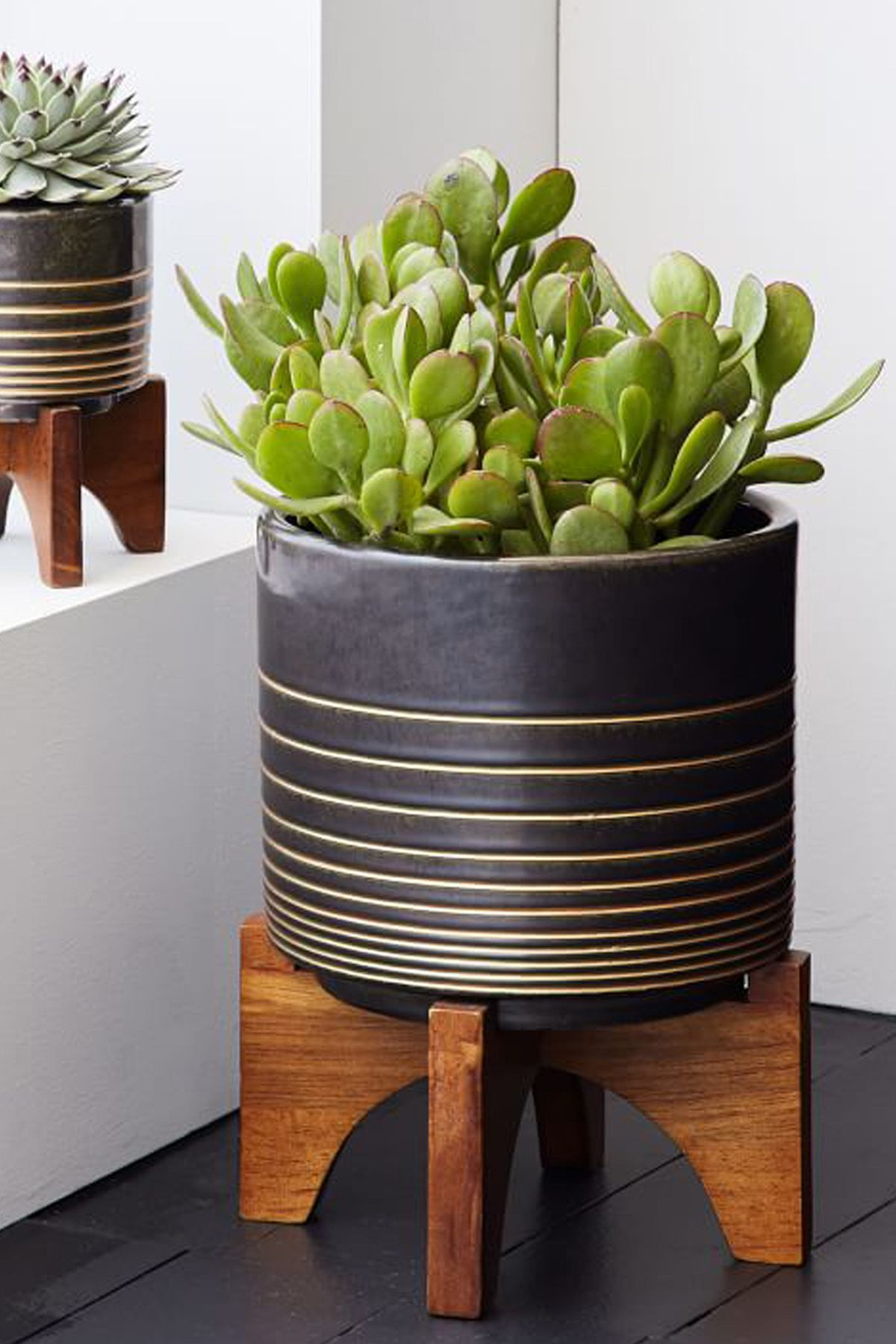 18 Stylish Indoor Flower Pots Affordable Indoor Pots For Your Plants
