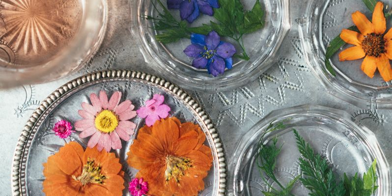 How To Make Pressed Flower Glass Coasters Craft Ideas