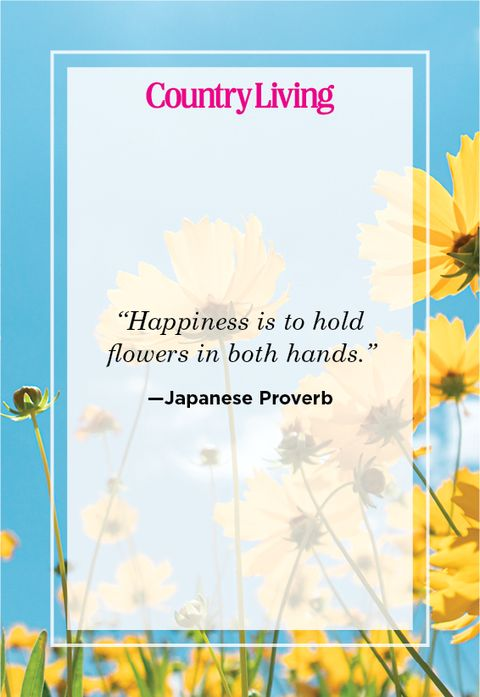 japanese proverb about flowers
