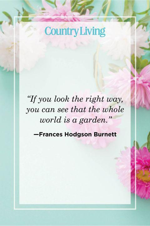 flower quote by frances hodgson burnett
