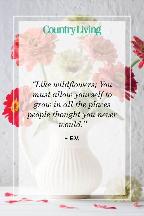 flower quote by ev