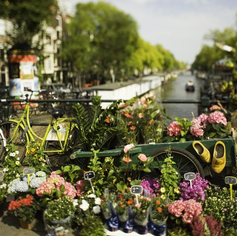 Flower stall with view down Princengrecht Canal