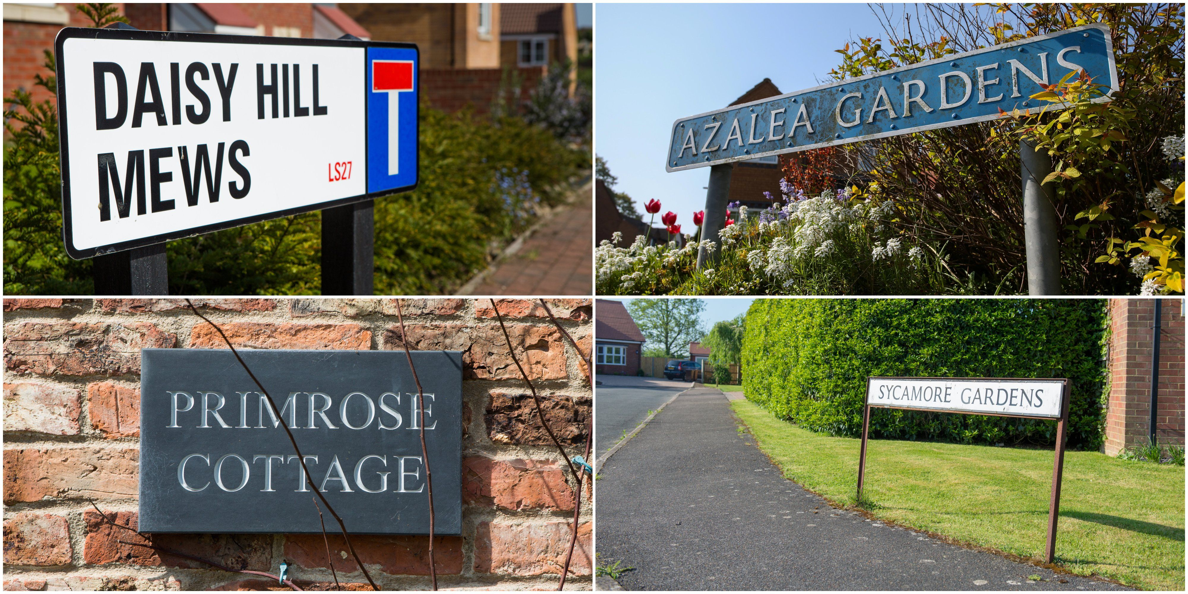 A quarter of british houses named after flowers most popular a quarter of british houses named after flowers most popular flower and tree street names izmirmasajfo