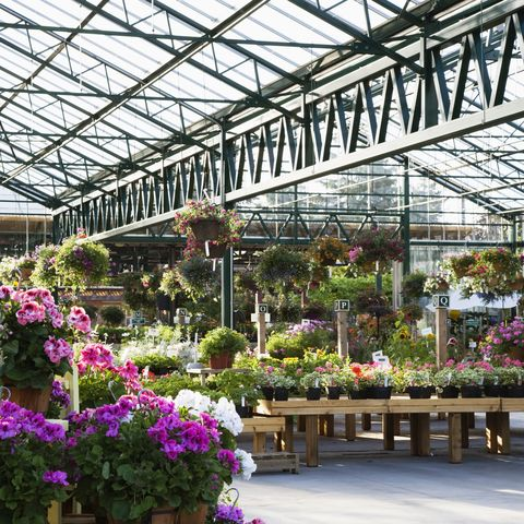 will garden centres stay open during england's third lockdown