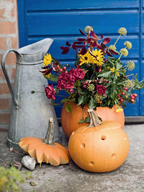 flowers in pumpkins in a garden