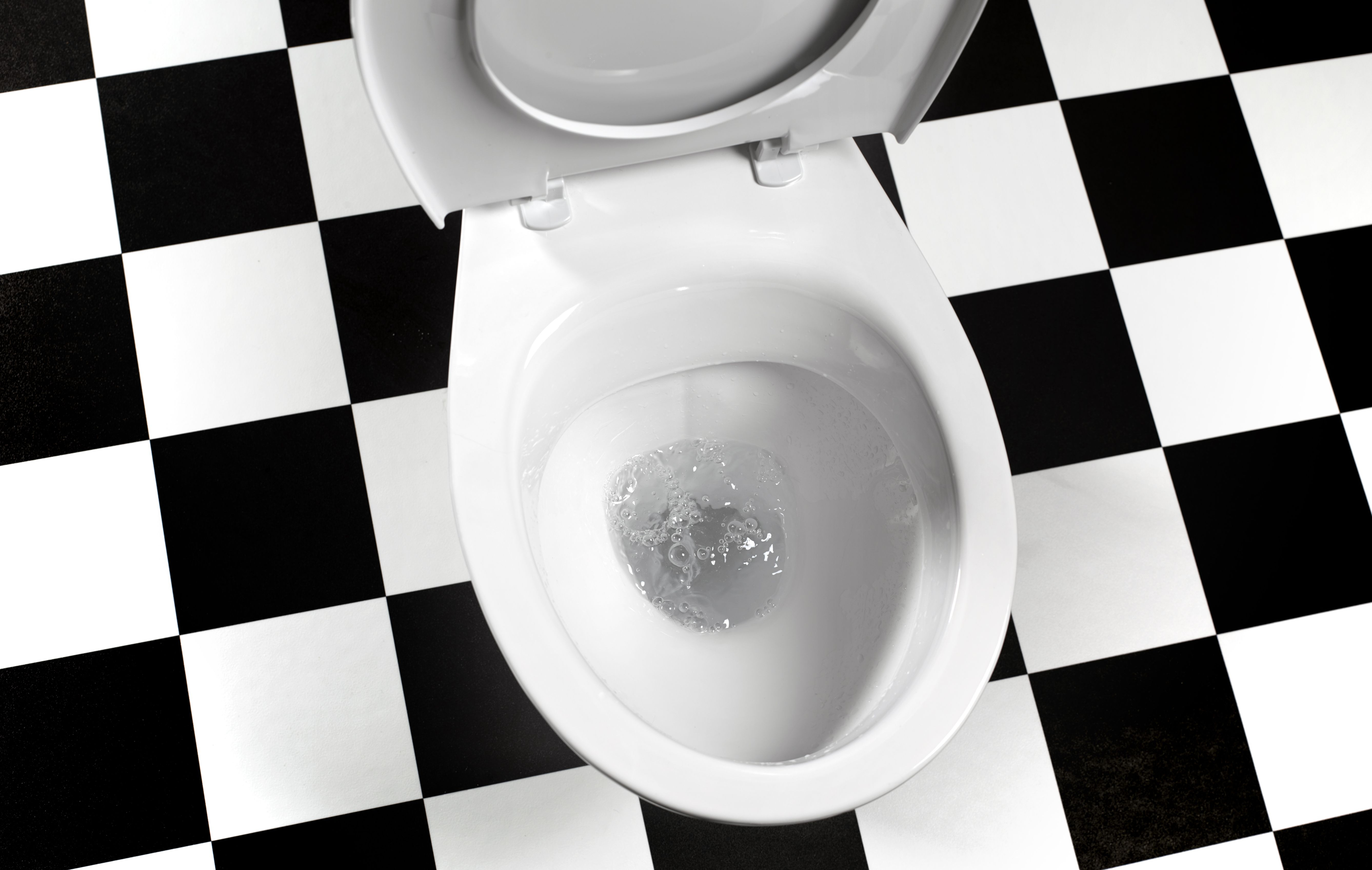 This Company Wants Photos of Your Poop. For Science.
