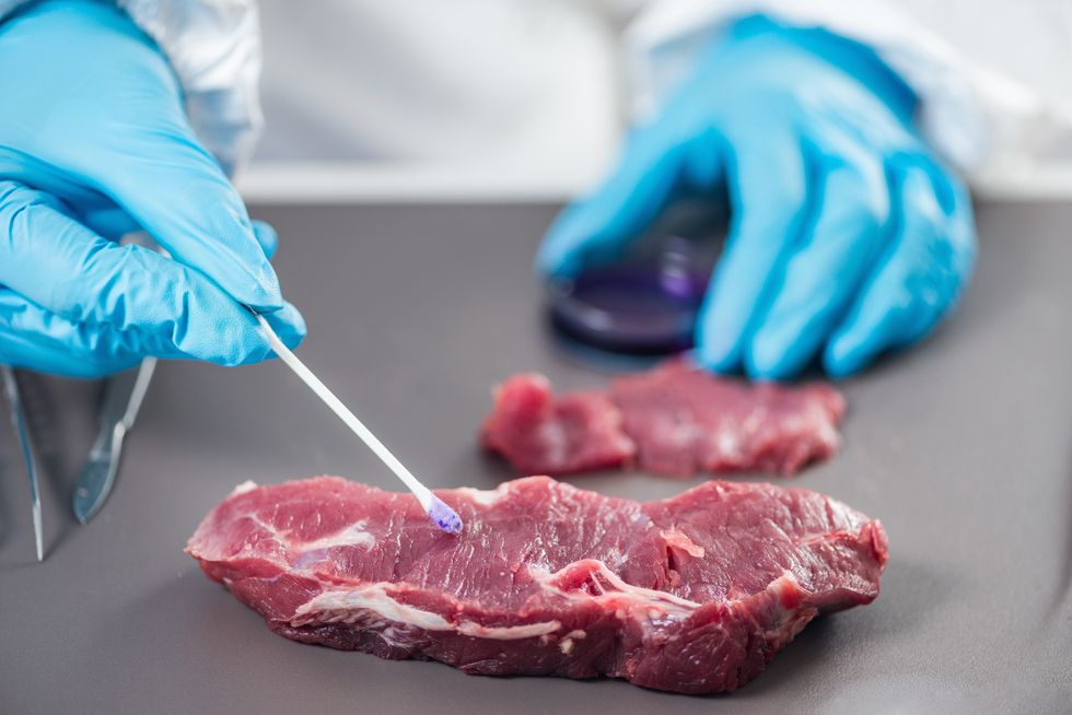Over Half of the Burgers, Steaks and Chicken Breasts We Eat Will Be 'Grown' Within 20 Years