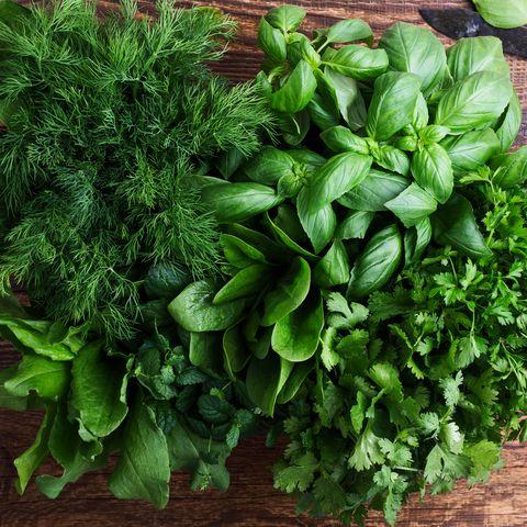 food to keep in freezer herbs