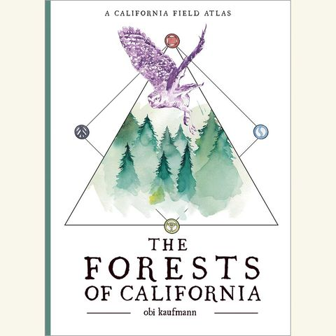 the forests of california, obi kaufmann