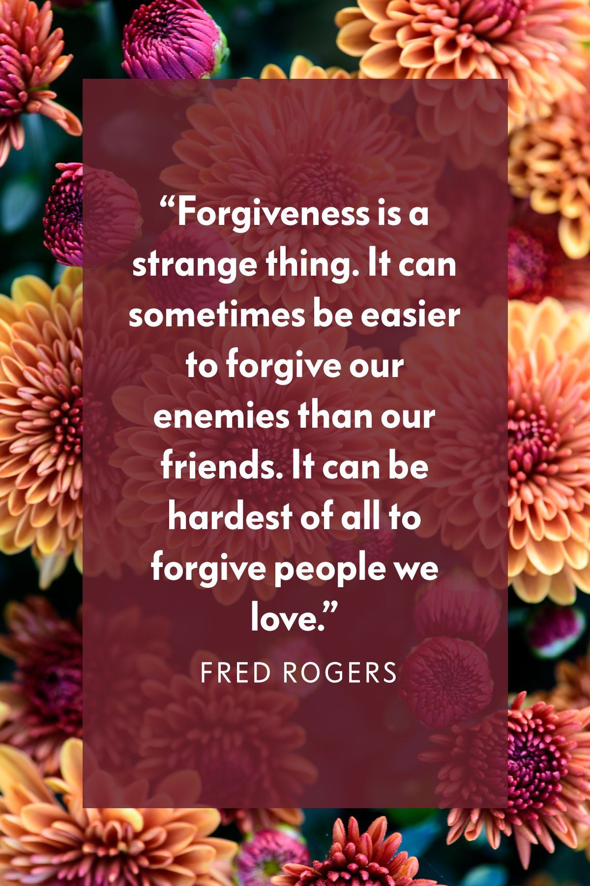 21 Forgiveness Quotes That Will Set You Free