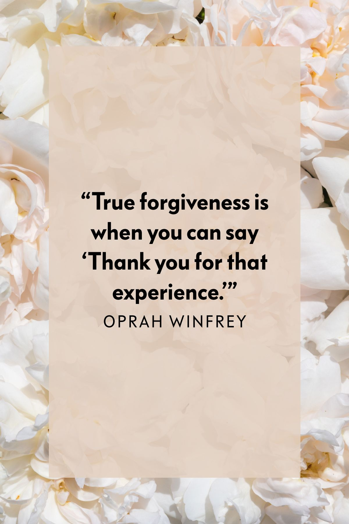 11 Forgiveness Quotes That Will Set You Free