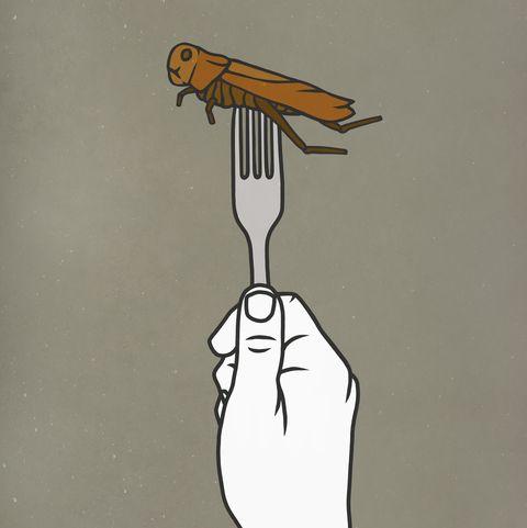 fork piercing cockroach