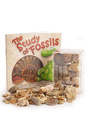 fossil box christmas gifts for kids