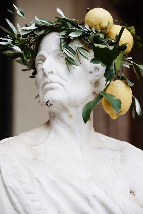 White, Sculpture, Forehead, Head, Statue, Headpiece, Chin, Art, Plant, Headgear,