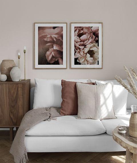 fotografía de peonías rosas