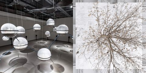 Interior design, Branch, Lamp, Lighting accessory, Design, Architecture, Sphere, Lampshade, Material property, Room,