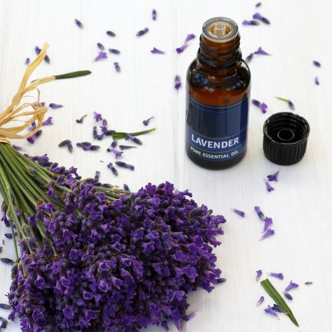 Fragrant lavender and bottle of lavender oil
