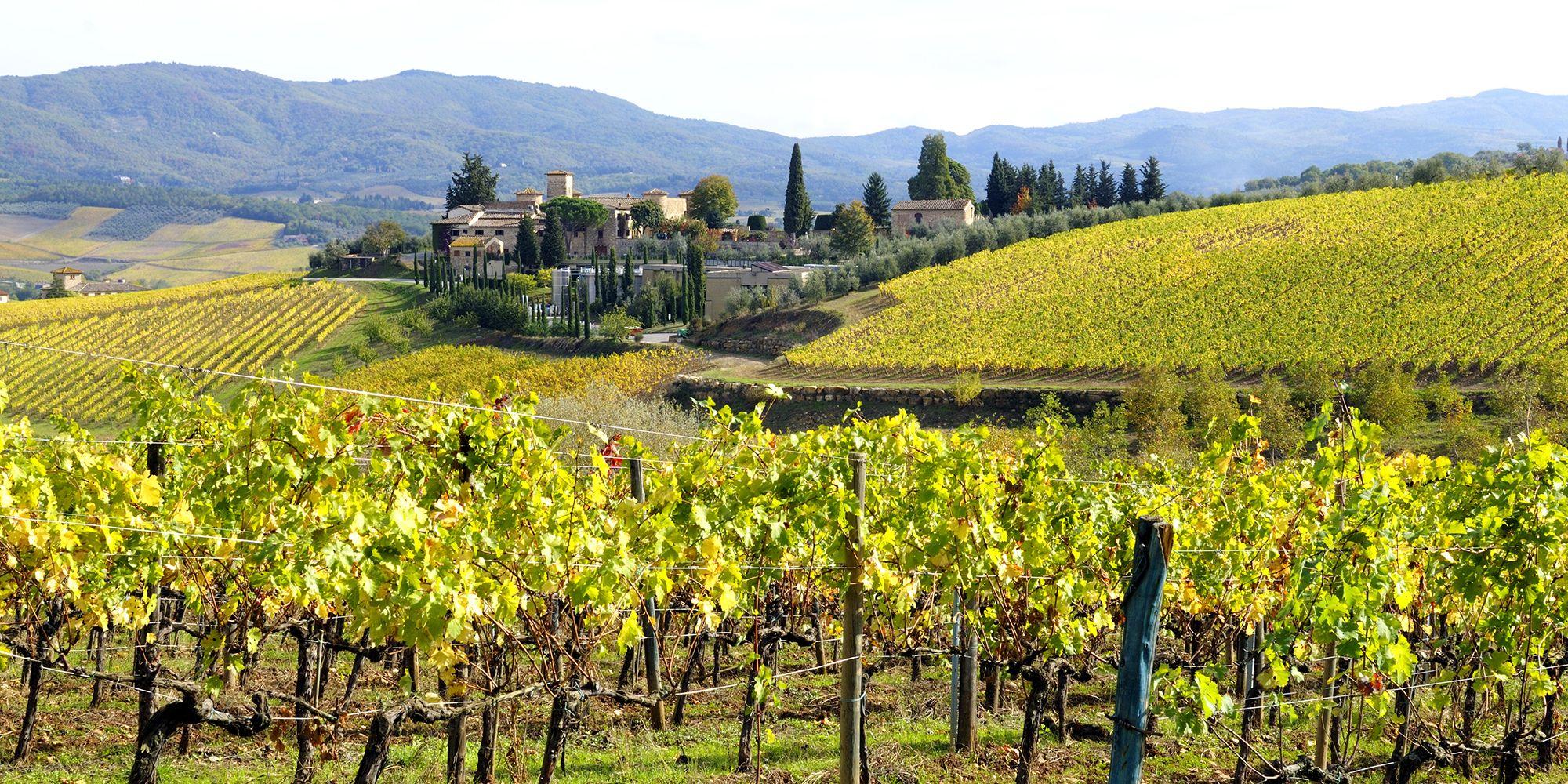 Franciacorta Italian Village and Vineyard in Fall