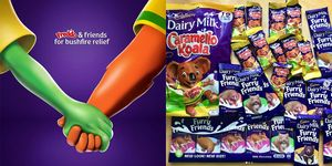 Cadbury Is Donating Proceeds From Freddos And Caramello Koalas To Australian Wildfires