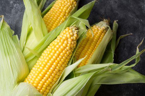 fresh corn cob on dark background