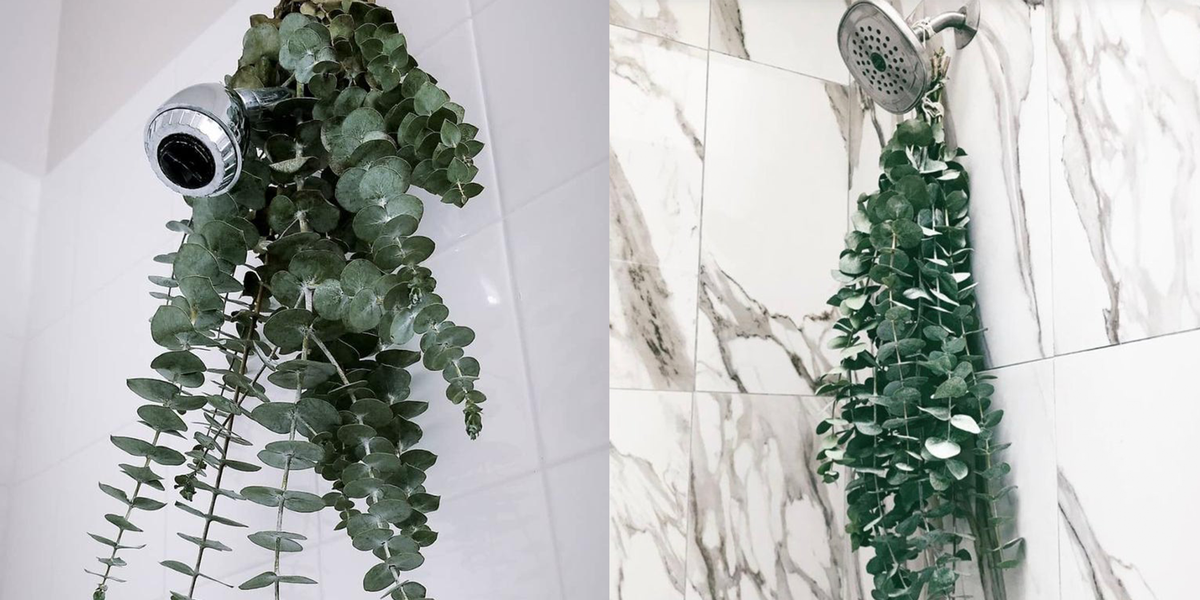 This Hanging Eucalyptus Wreath Is the Prettiest Way to Make Your Shower More Relaxing