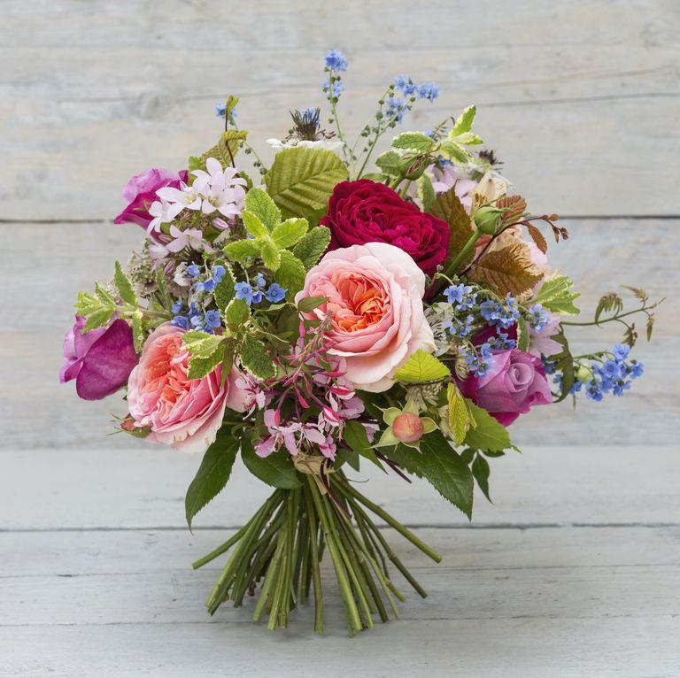 cách chăm hoa tươi lâu