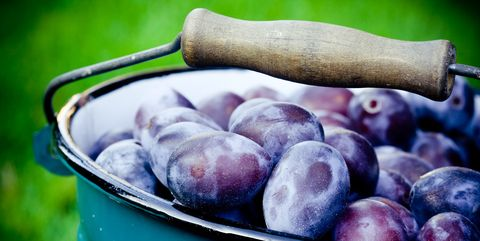 Fresh plums close-up