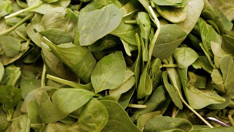 fda issues warning after e coli outbreak traced to spinach