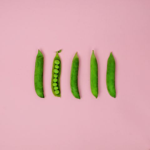 Fresh spring peas in a row on a pink background