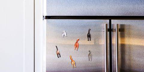 fridge magnets best 2018