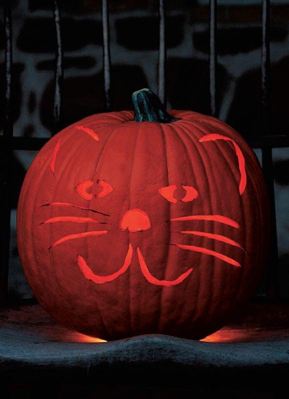 Friendly Feline Pumpkin